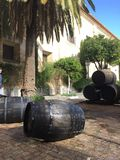 Giant whiskey barrels stacked atop. Each other, on a sunny courtyard, with green trees protruding behind. Barrels such as these were used for brewing/ageing royalty free stock image