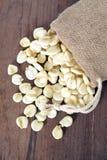 Giant white corn Royalty Free Stock Photo