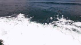 Giant white foamy waves crashing in dark deep blue ocean water with surfboarders surfing in 4k aerial drone camera view. Giant white foamy waves crashing in dark stock video