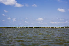 Giant White Sand Bags, Gulf Coast Stock Photography