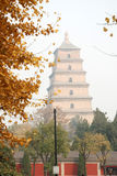 Giant Wild Goose Pagoda in autumn Royalty Free Stock Photography