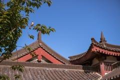 Giant Wild Goose Pagoda stock image