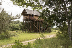 Giant wooden house  on poles Royalty Free Stock Images