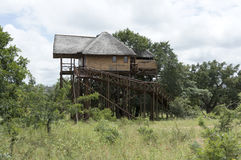Giant wooden house  on poles in  africa Royalty Free Stock Photography