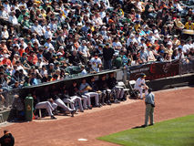 Giants bullpen sits by waiting for chance to play Royalty Free Stock Photography