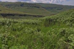 Giants Castle KwaZulu-Natal nature reserve Royalty Free Stock Photo