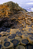 Giants Causeway. Hexagonal patterns at the Giants Causway, Northern Ireland Stock Photography