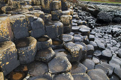Giants Causeway Stock Images