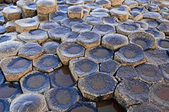 Giants Causeway. Some of the millions of hexagon shaped rocks that make up the world heritage site at the Giants Causeway in Antrim, Northern Ireland. The rocks Stock Image