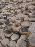 Giants Causeway Stock Photos