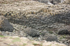 Giants Causeway. The Giants Causeway on the coast of Northern Ireland royalty free stock photos