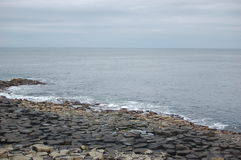 Giants Causeway. The Giants Causeway in Northern Ireland stock image