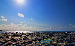 Giants Causeway in afternoon sunlight Royalty Free Stock Images