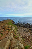 Giants Causeway Basalt Column Ridge Royalty Free Stock Images