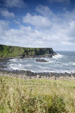 Giants Causeway Coast, County; Antrim Royalty Free Stock Photo