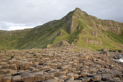 Giants Causeway Coast, County; Antrim Royalty Free Stock Photography