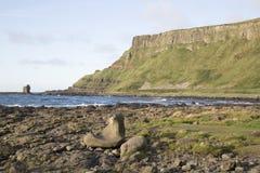 Giants Causeway; County Antrim; Northern Ireland. UK royalty free stock photography