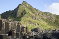 Giants Causeway; County Antrim. Northern Ireland, UK Stock Image