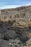 Giants Causeway Detail Stock Photos