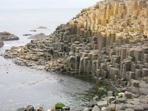 Giants Causeway Royalty Free Stock Photos