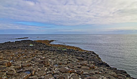 Giants Causeway early morning low tide Royalty Free Stock Photos