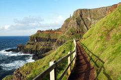 Giants Causeway, Ireland. Path at the Giants Causeway, Ireland Royalty Free Stock Image