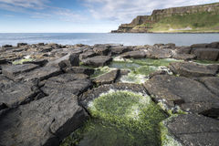 Giants Causeway national park landscape, North Ireland Royalty Free Stock Photos