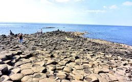 Giants causeway ni Royalty Free Stock Image