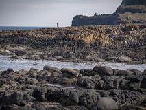 Giants Causeway in North Ireland is a popular landmark at the coast. Travel photography stock photography