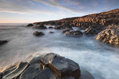 The Giants Causeway in North Ireland Stock Photography