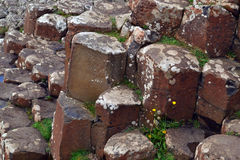The Giants Causeway in Northern Ireland Stock Photography