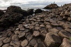 Giants Causeway, Northern Ireland Stock Images