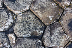 Giants Causeway Stones. Close up of the stones from the Giants Causeway Northern Ireland Stock Image