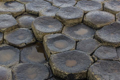 Giants Causeway Stones Royalty Free Stock Photography