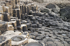 The Giants Causeway. The unusual rocks of the Giants Causeway in Northern Ireland Royalty Free Stock Image