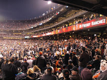 Giants Fans cheer in the stands. SAN FRANCISCO, CA - JUNE 7: Giants Fans cheer in the stands as 'Freddy Sanchez' is displayed on the screen at AT&T Park on June Royalty Free Stock Photography