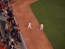 Giants Outfield grabs flyball on the warning track Stock Photos