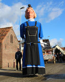 Giants on Parade. AALST, BELGIUM JANUARY 17 2016: One of the Herdersem giants during the St. Anthony's parade in Herdersem near Aalst. It is a cultural festival Royalty Free Stock Image