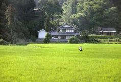 giapponese del paese Fotografie Stock