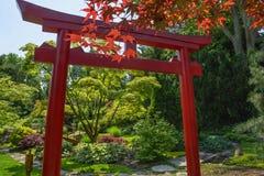 Giapponese Tori Garden Fotografia Stock