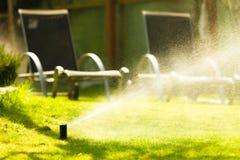Giardinaggio Acqua di spruzzatura dello spruzzatore del prato inglese sopra erba Immagini Stock Libere da Diritti