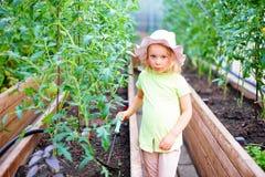 Giardinaggio - bambina che prende cura delle piante nel greenho Fotografia Stock Libera da Diritti
