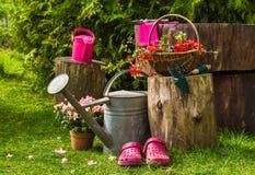 Giardinaggio degli utensili degli strumenti di giardino della primavera Immagine Stock