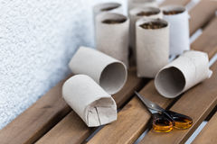 Giardinaggio dell'interno di Upcycling Immagini Stock Libere da Diritti