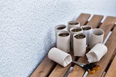 Giardinaggio dell'interno di Upcycling Fotografia Stock Libera da Diritti