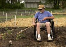 Giardinaggio della sedia a rotelle Fotografia Stock Libera da Diritti