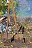 Giardinaggio di autunno Fotografie Stock Libere da Diritti