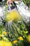 Giardinaggio di estate Fotografia Stock