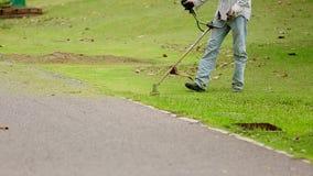 Giardinaggio di falciatura del campo di erba verde stock footage