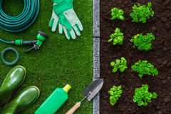 Giardinaggio e produzione alimentare Immagine Stock Libera da Diritti
